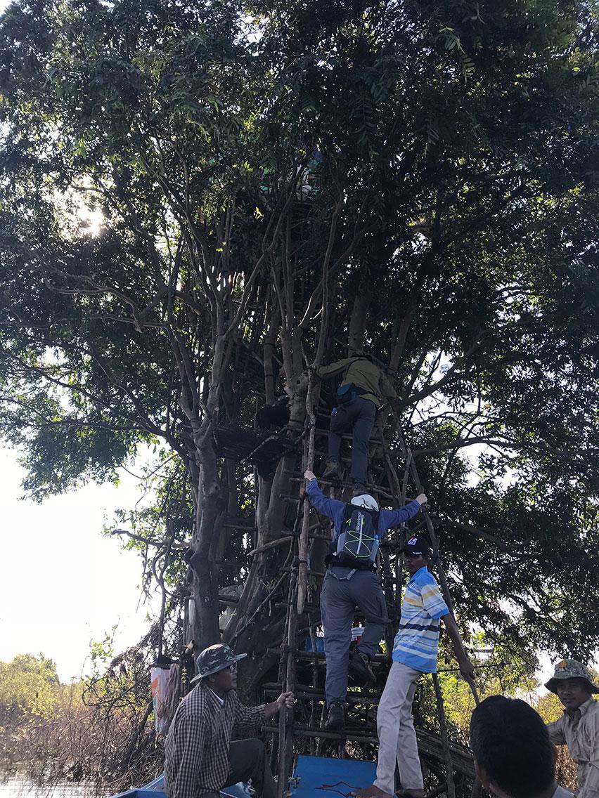 Climbing up to the viewing platform, Tonle Sap Lake, Cambodia.