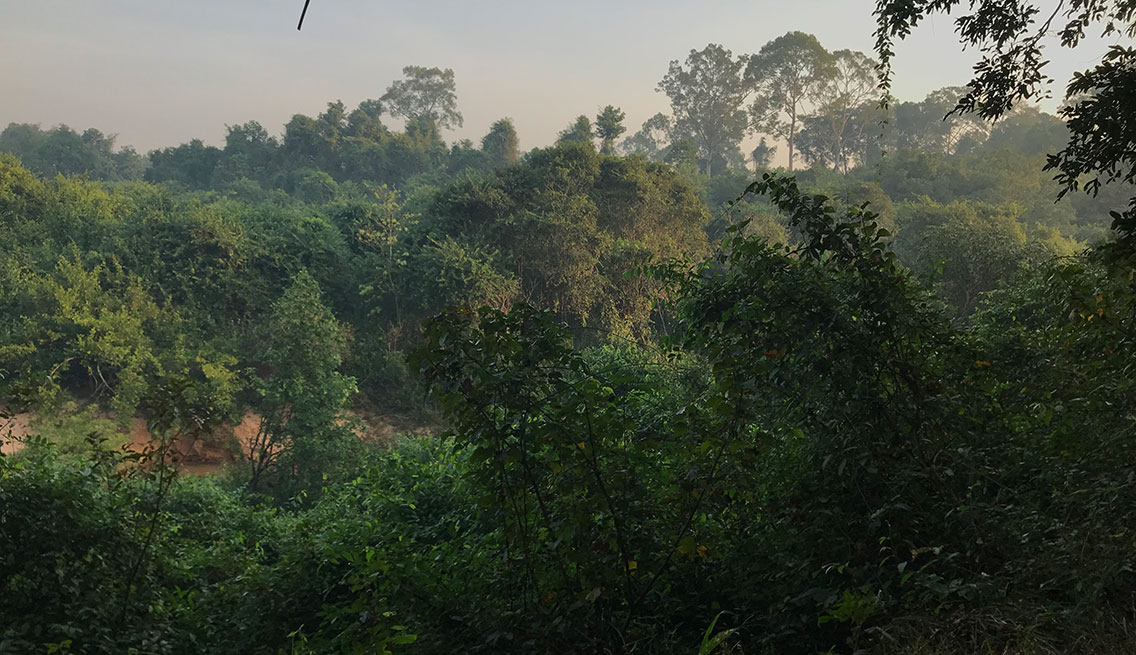 River valley in the forest, Tmatboey, Cambodia.