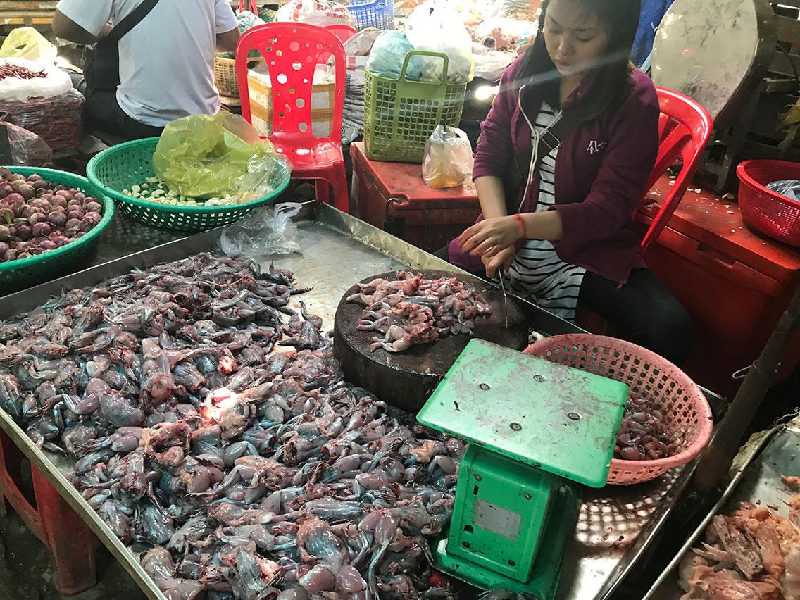 Frogs for sale, Phnom Penh, Cambodia.