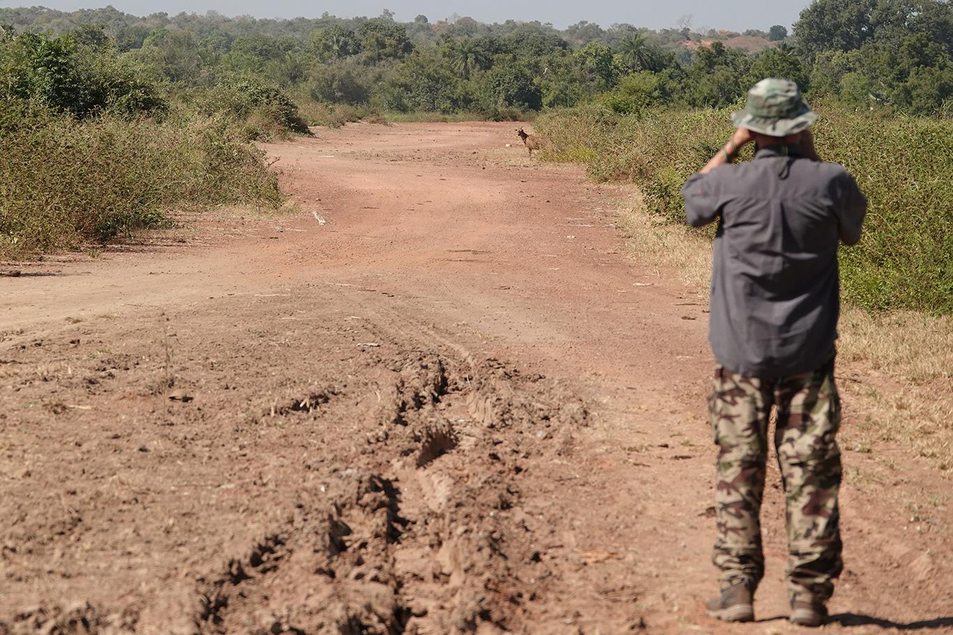 Birding at Kampant, Kampant, The Gambia.