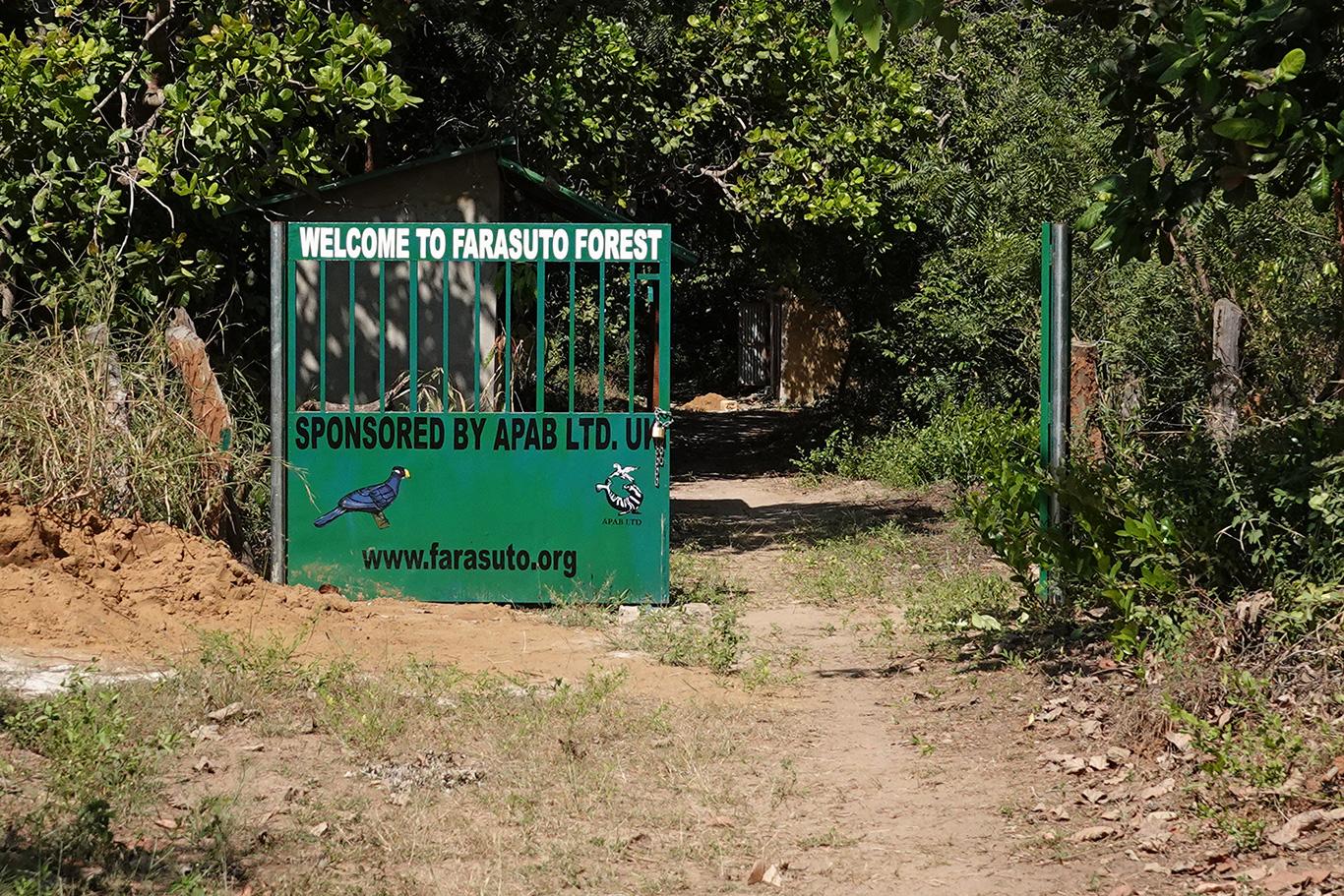Farasuto Forest, Farasuto, The Gambia.