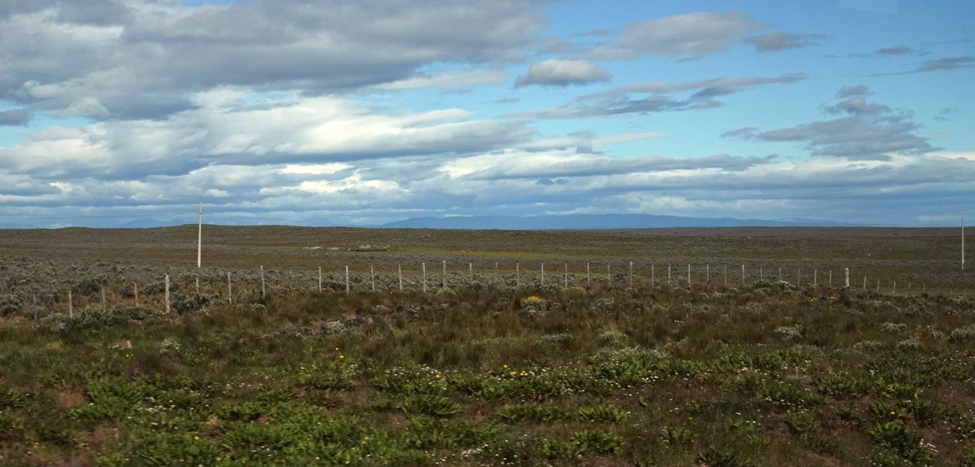Patagonian Steppe, Ruta 9, Punta Arenas, Chile.