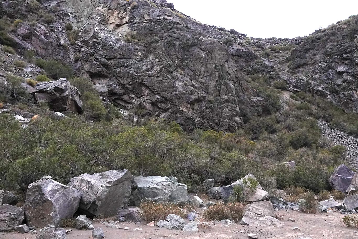 Habitat of Crag Chilia, Camino Embalse El Yeso, Chile.