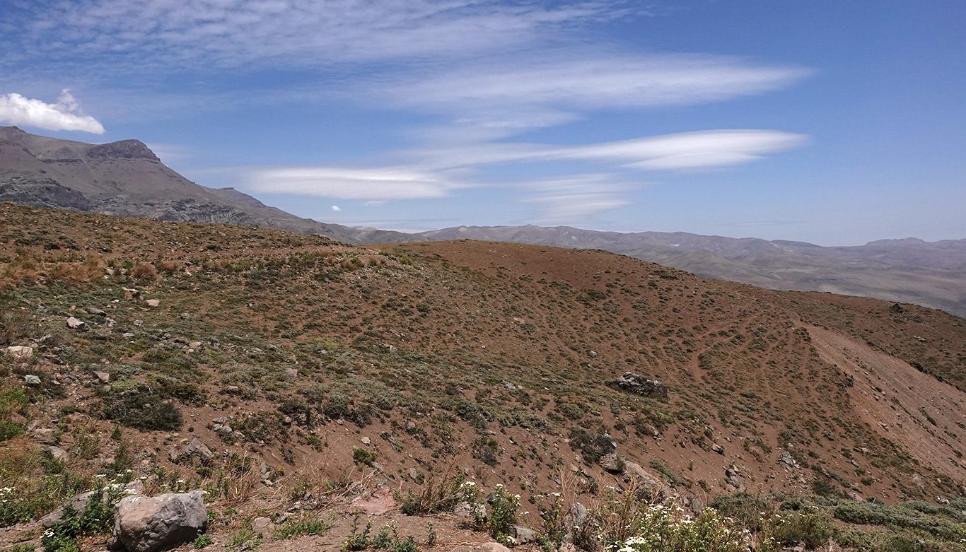 Typical habitat along road, Camino a Farellones, Chile.