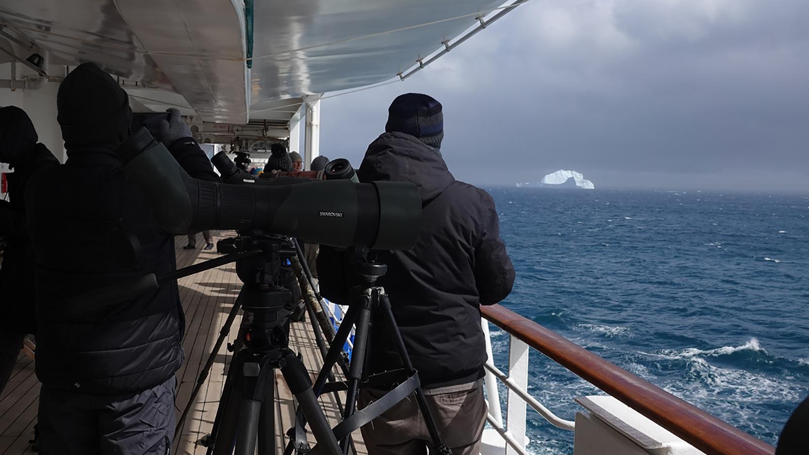 Seawatching in the Bransfield Strait, Bransfield Strait, Antarctica.